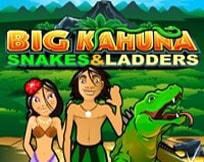 Big Kahuna - Snakes and Ladders